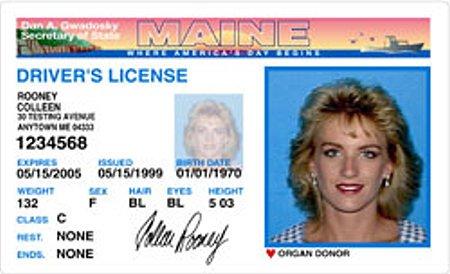 汽车日报:美国驾照分级